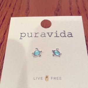 NWT Pura Vida 🐢Turtle earrings!! Super cute!!